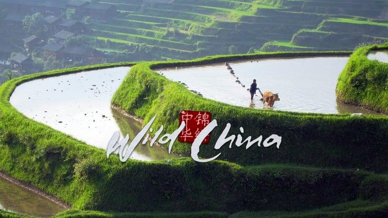 Wild+China