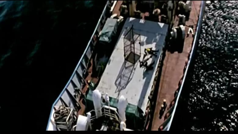 Voir Deadly Cargo en streaming vf gratuit sur StreamizSeries.com site special Films streaming