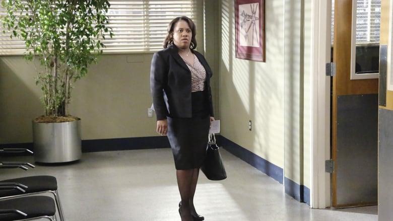Grey's Anatomy Season 9 Episode 21