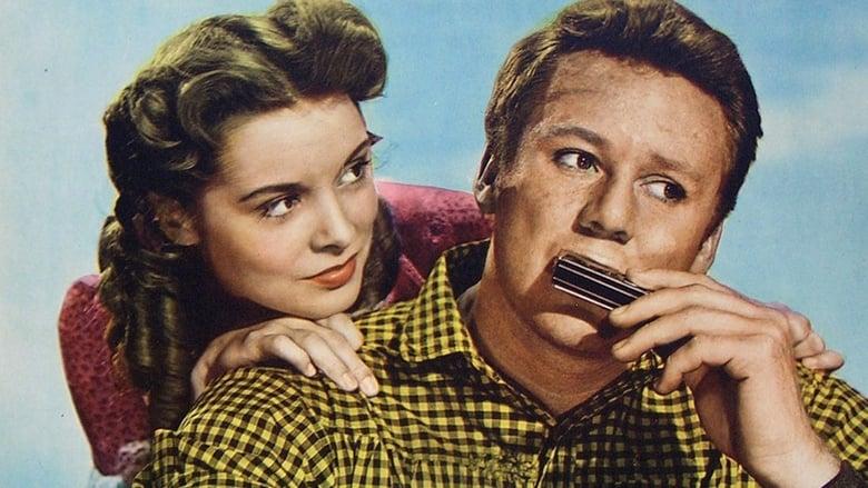 Guarda Il Film The Romance of Rosy Ridge Completamente Gratuito