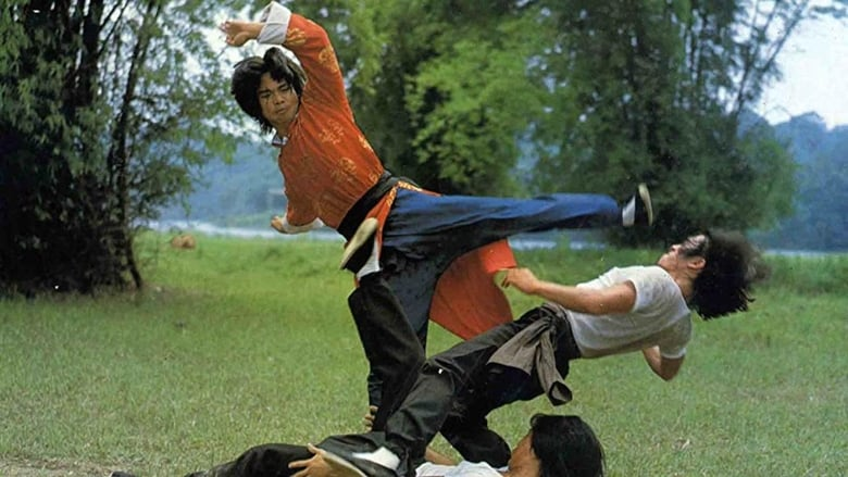 Watch Crazy Guy with Super Kung Fu free