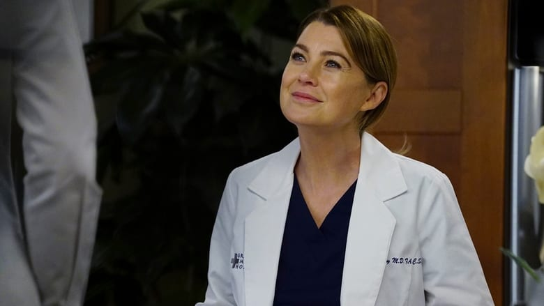 Grey's Anatomy: 13×15