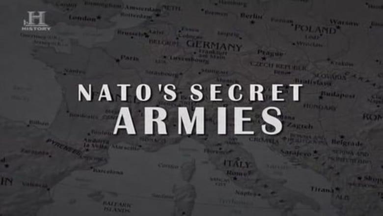 NATO's Secret Armies 2009