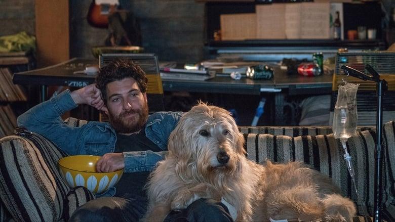 Nossa Vida com Cães