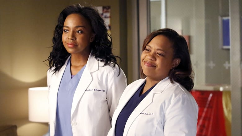 Grey's Anatomy Season 10 Episode 23