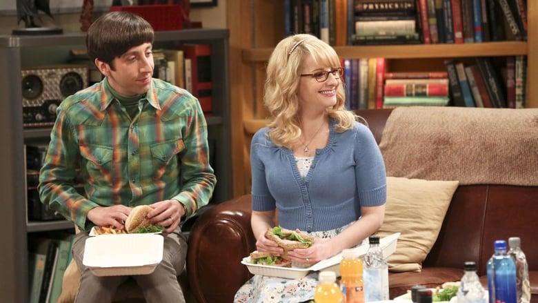 The Big Bang Theory Season 9 Episode 22