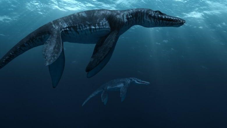 Sea+Rex+-+I+Dinosauri+degli+abissi+marini