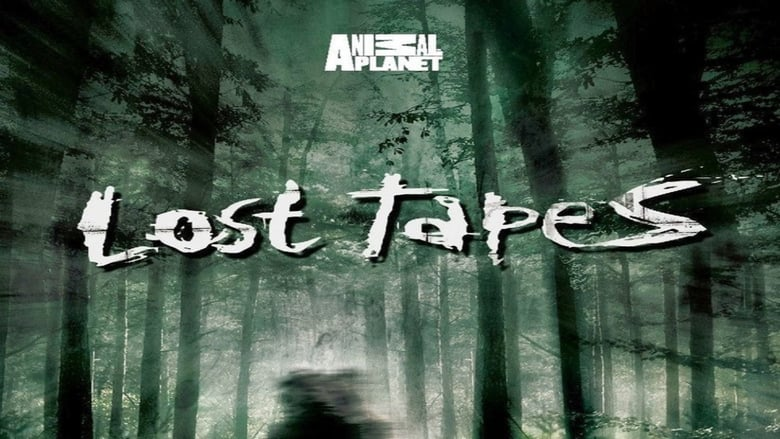 Lost+Tapes