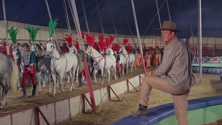 Guarda Il circo e la sua grande avventura Con Sottotitoli In Italiano