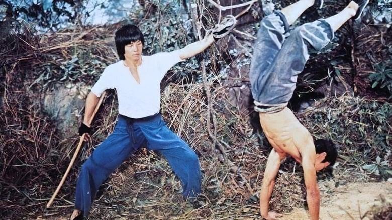 Watch Mad Monkey Kung Fu Putlocker Movies