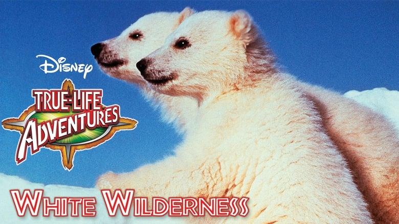 White Wilderness banner backdrop