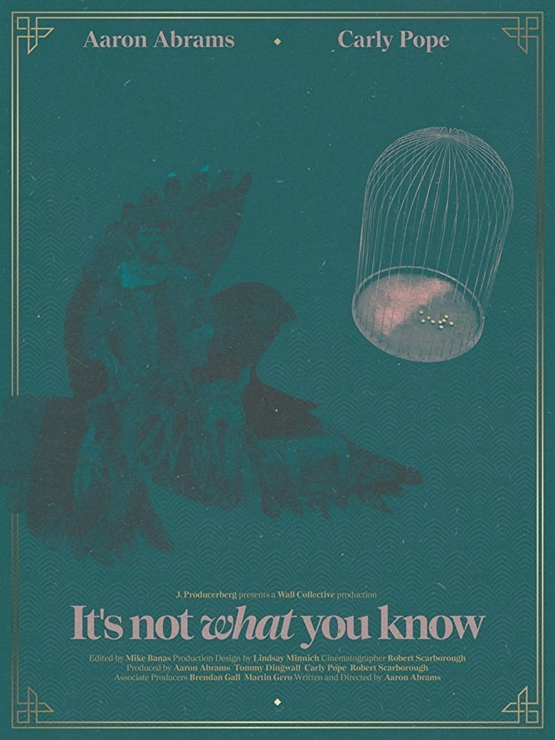 It's not What You Know (2016)