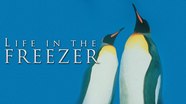 Life+in+the+Freezer