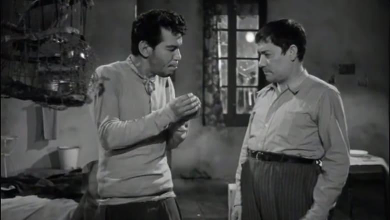 Cantinflas Soy un prófugo