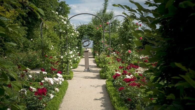 فيلم Painting the Modern Garden: Monet to Matisse 2016 مترجم اونلاين