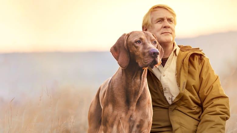 Vita+da+cani+con+Bill+Farmer