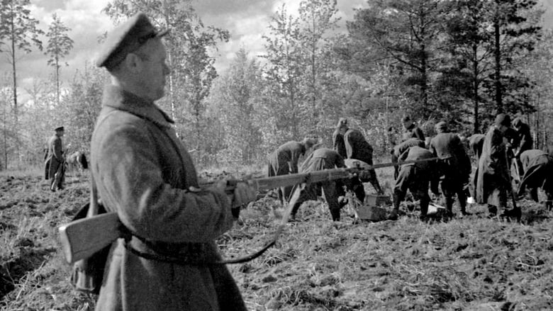 مشاهدة فيلم Stalin and the Katyn Massacre 2020 مترجم أون لاين بجودة عالية