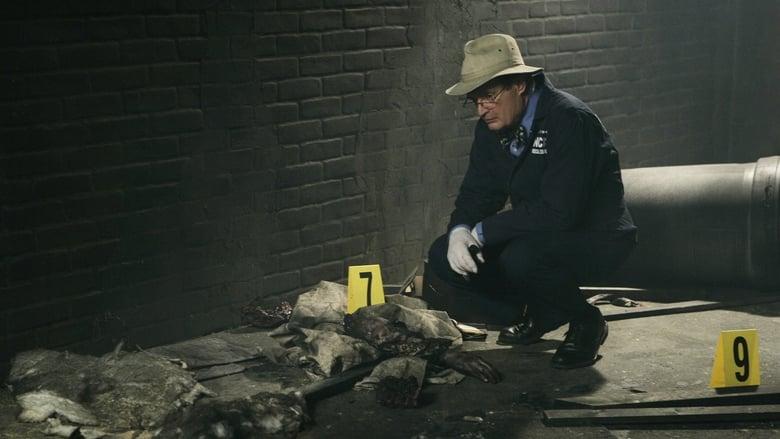 NCIS Season 4 Episode 19