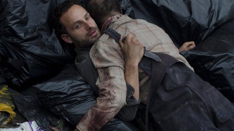The Walking Dead: Invazia zombi Sezonul 2 Episodul 10