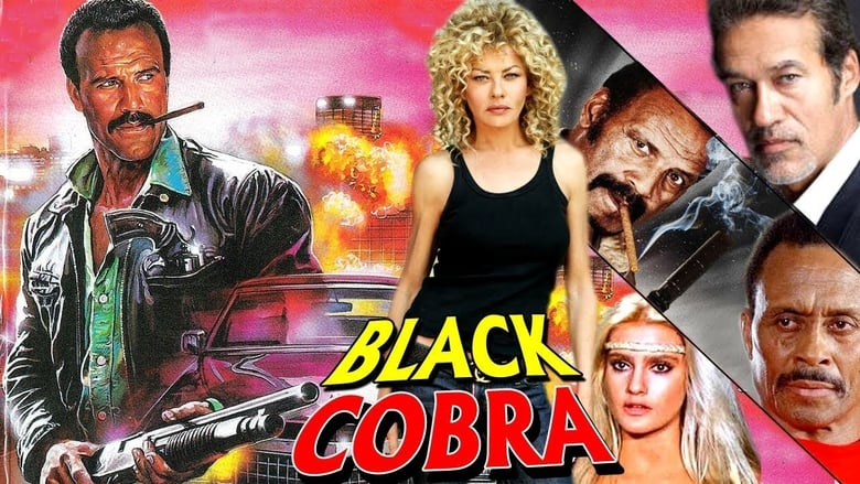 Cobra+nero