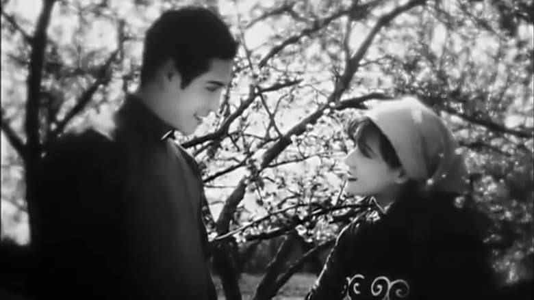 Filmnézés Tao hua qi xue ji Feliratot Online
