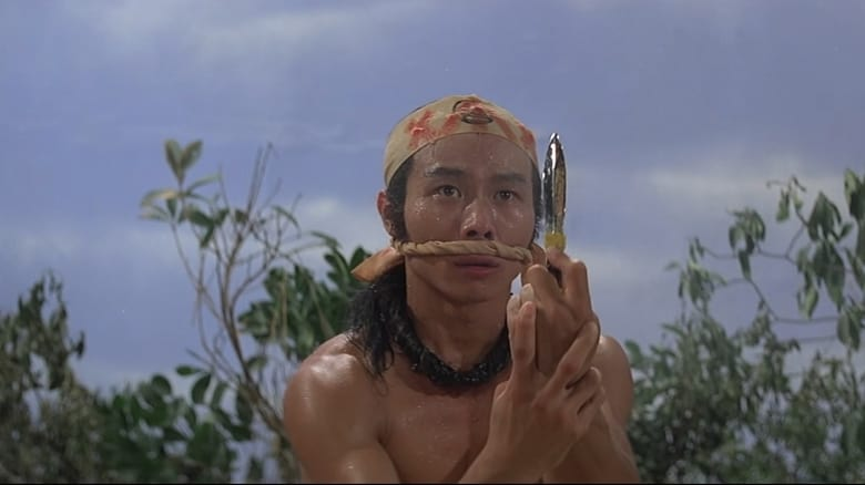 Voir Les 18 armes légendaires du kung-fu en streaming vf gratuit sur StreamizSeries.com site special Films streaming