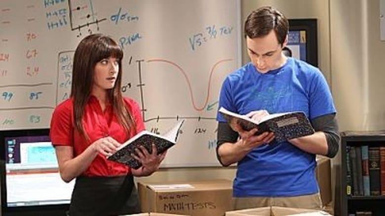 Didžiojo sprogimo teorija / The Big Bang Theory (2012) 6 Sezonas