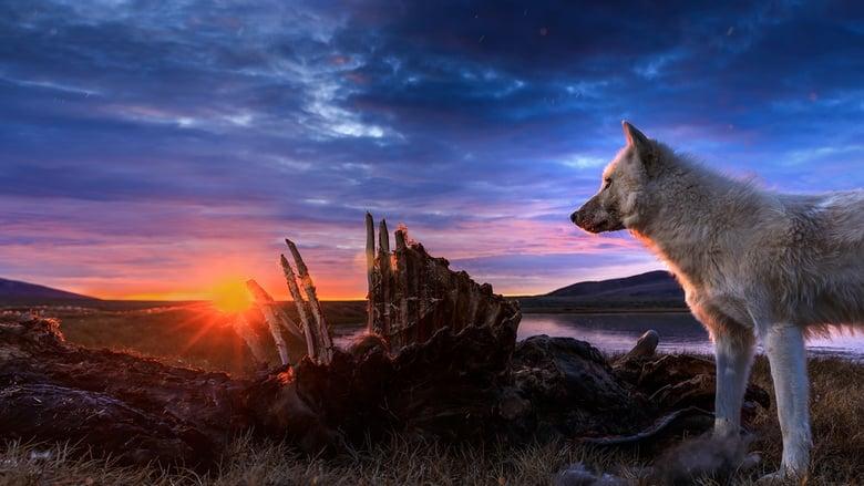 مسلسل Kingdom of the White Wolf 2019 مترجم اونلاين