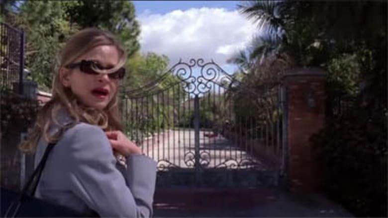 Detektyvė Džonson / The Closer (2006) 2 Sezonas