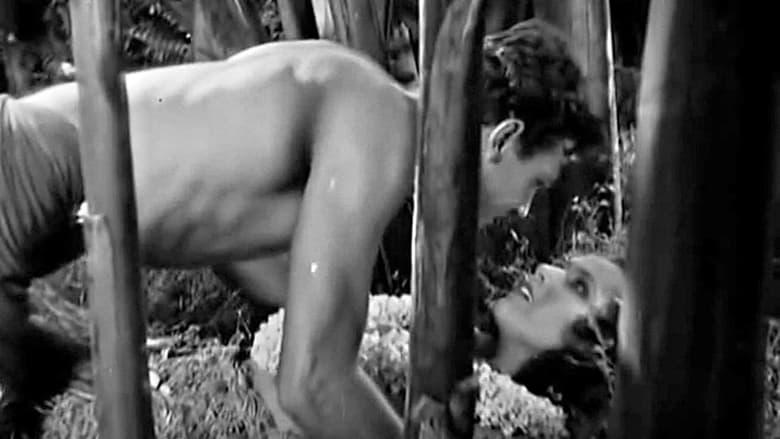 кадр из фильма Райская птичка
