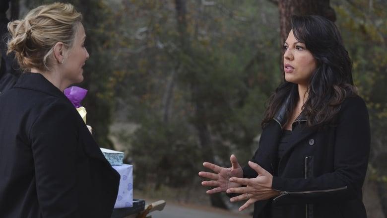Grey's Anatomy Season 10 Episode 13