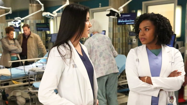 Grey's Anatomy: 13×13