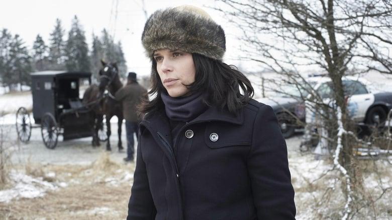 فيلم An Amish Murder 2013 مترجم اونلاين