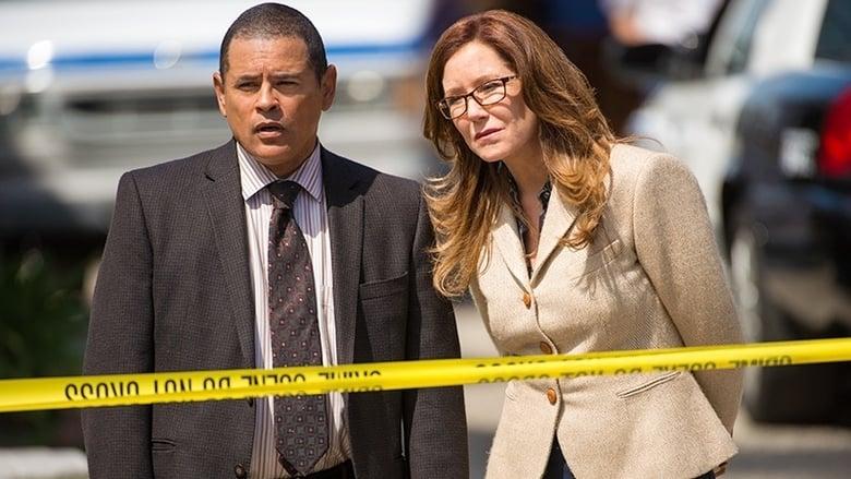 Sunkių nusikaltimų skyrius / Major Crimes (2014) 3 Sezonas