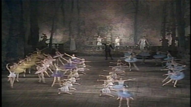 Watch Don Quixote (Kirov Ballet) Openload Movies