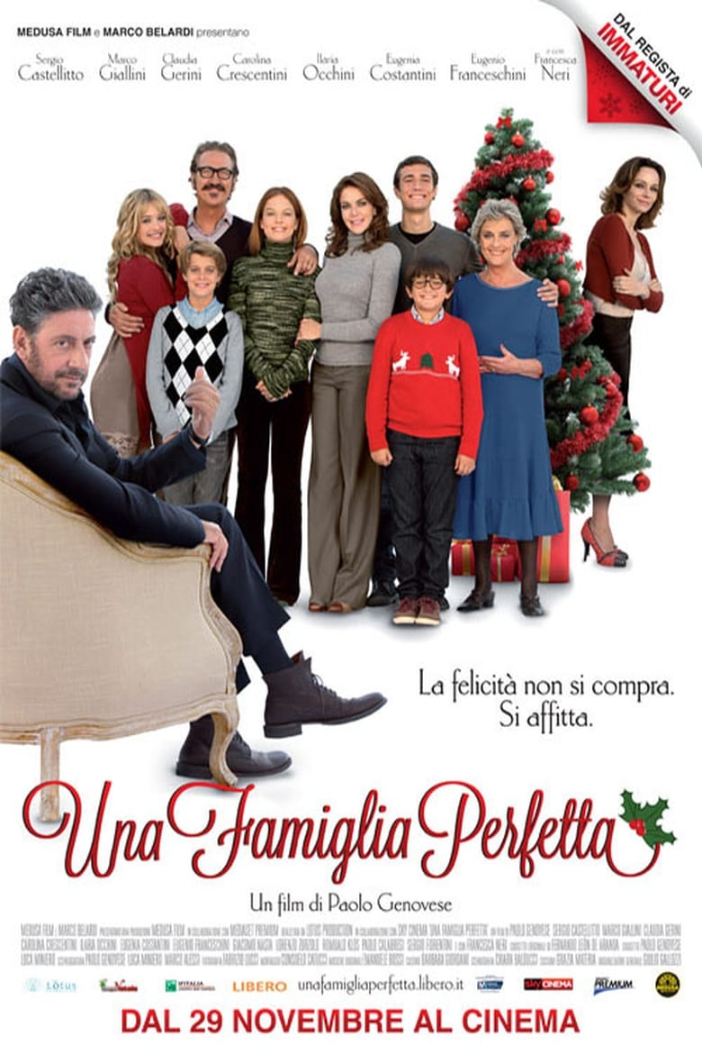 A Perfect Family (2012)