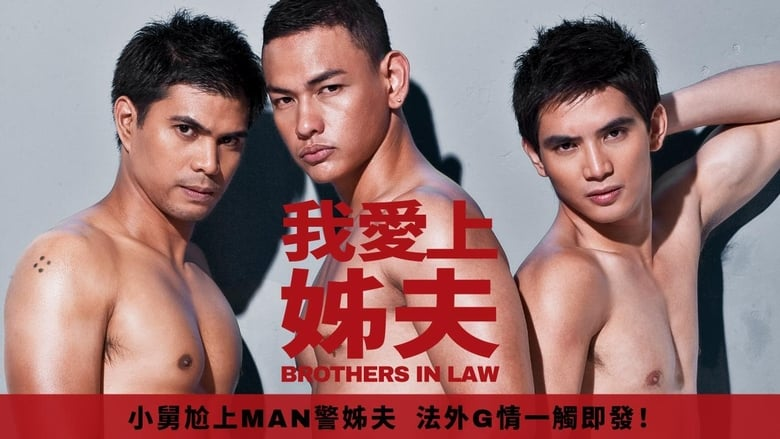 Brothers in Law banner backdrop