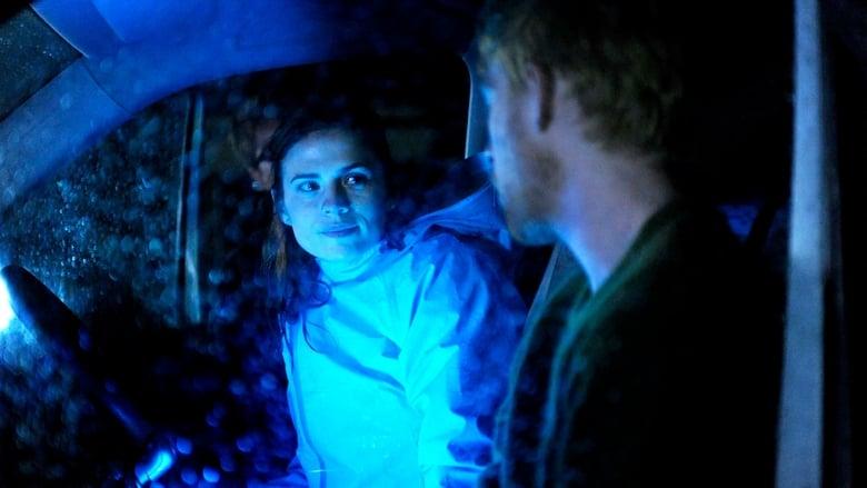 Juodasis veidrodis / Black Mirror (2013) 2 Sezonas LT SUB