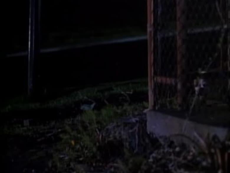 MacGyver 1985 Sezonul 7 Episodul 5