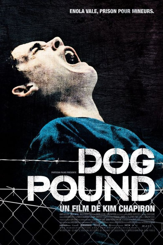 Dog Pound Stream