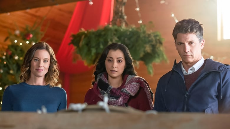 Voir Mon Noël en Alaska en streaming vf gratuit sur StreamizSeries.com site special Films streaming