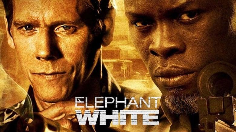 Elephant+White