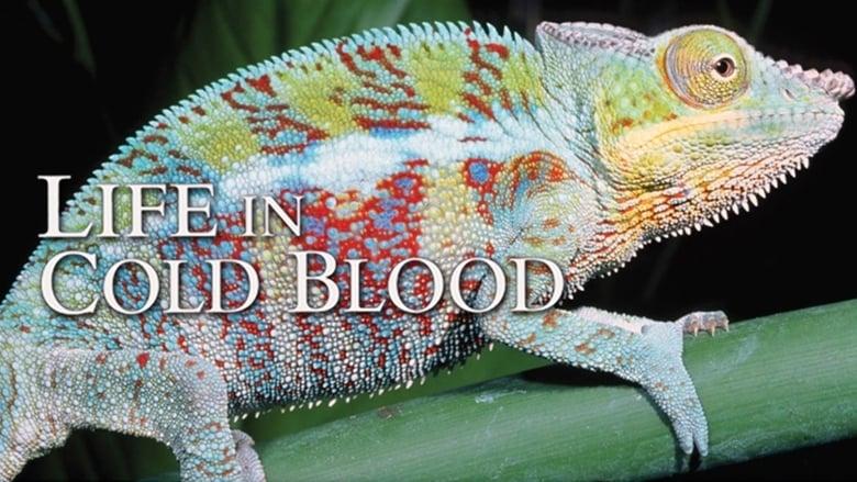 مشاهدة مسلسل Life in Cold Blood مترجم أون لاين بجودة عالية
