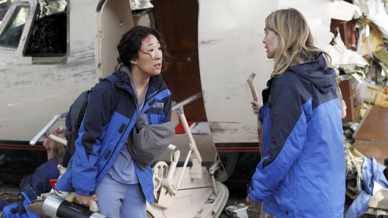 Série Grey's Anatomy Saison 8 épisode 24 en streaming VF ...
