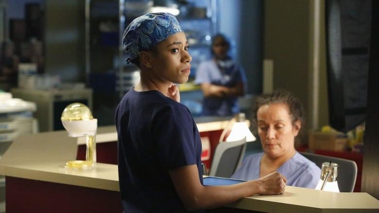 Grey's Anatomy: 11×11