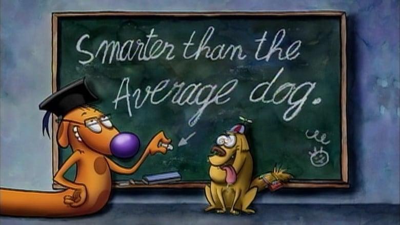 Catdog Season 1 Episode 37 Smarter Than The Average Dog Mtflix