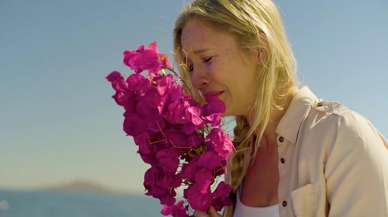 Película Paloma's Flight En Buena Calidad Gratis