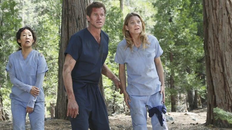Grey's Anatomy: 8×24