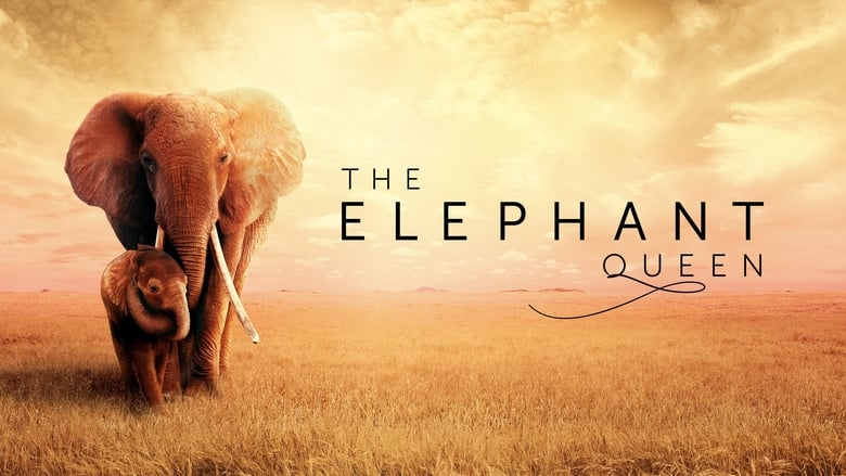 Watch The Elephant Queen 2019 Full Movie Online Free