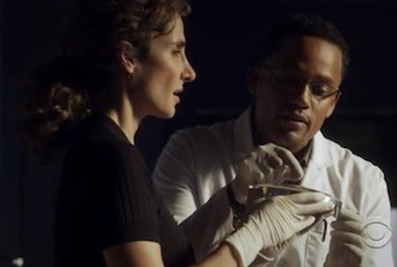 CSI: Nova York: 6×9